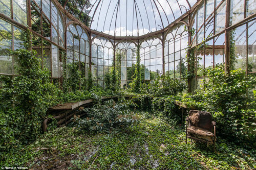 Vẻ đẹp kỳ quái bên trong những tòa nhà bỏ hoang - 15