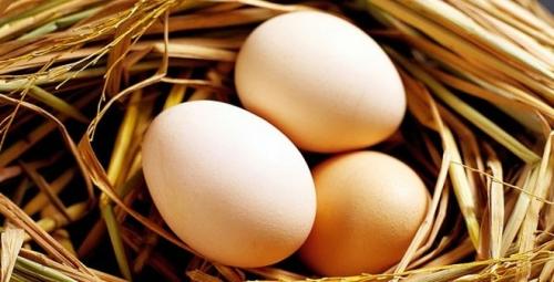 Sai lầm khi ăn trứng gà dễ khiến bạn gặp nguy hiểm - 1