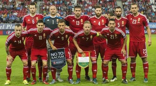 24 đội là ý tưởng tồi của Euro? - 2