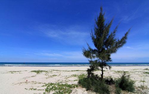 5 bãi biển đẹp không phải ai cũng biết ở Quảng Ngãi - 3
