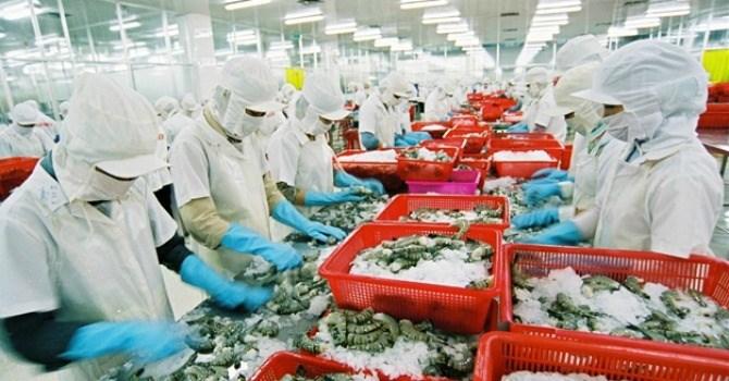 Vượt Thái Lan, Việt Nam đứng đầu thế giới xuất khẩu tôm - 1
