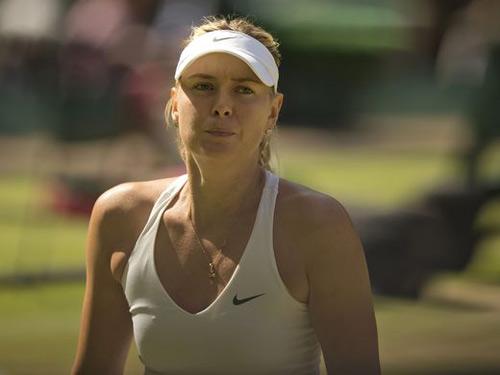 """Sharapova """"cáo già"""" chứ chẳng phải """"thỏ non"""" - 1"""