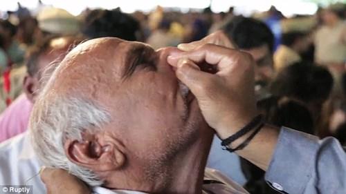 Hàng trăm nghìn người nuốt cá sống để chữa bệnh hô hấp - 7