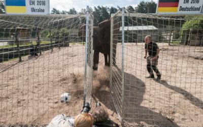 """Chi tiết Đức – Ukraine: Schweinsteiger ghi bàn """"kết liễu"""" (KT) - 16"""