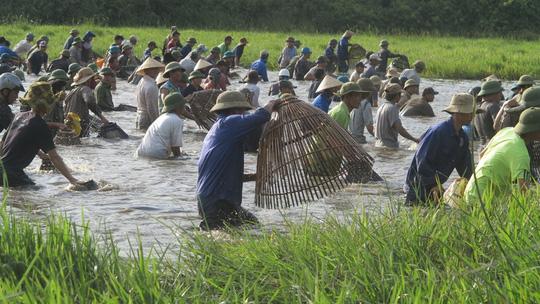 Hàng ngàn người dân đội nắng 39-40 độ C bắt cá cầu may - 5