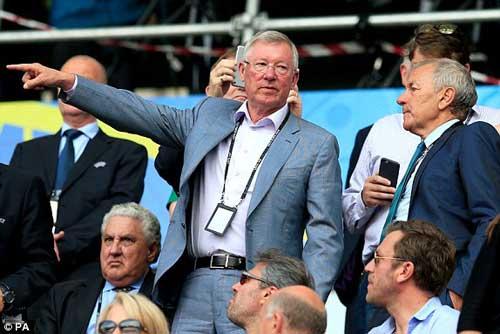 Sir Alex, fan nữ xinh khuấy động khán đài Euro - 1