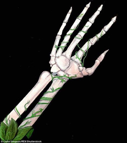 Nữ sinh biến cánh tay thành tranh 3D rợn người - 13
