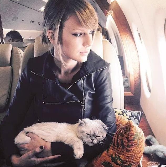 Khám phá hai chiếc phi cơ siêu sang của Taylor Swift - 14