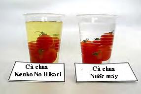 4 bước làm sạch thực phẩm của người Nhật - 1