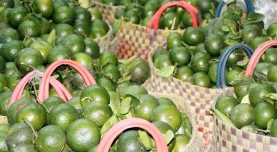 Rau xanh, trái cây… tăng giá mạnh do vào mùa mưa - 1