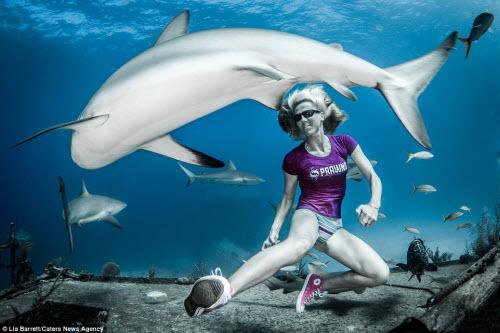 Người đẹp mạo hiểm một mình lặn giữa bầy cá mập - 2