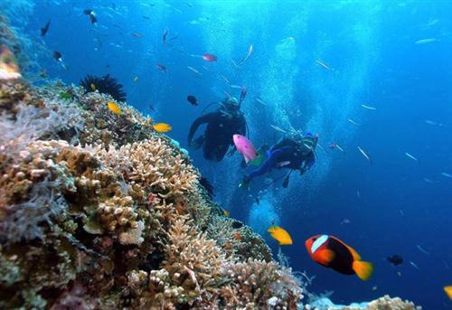 Những địa điểm nhất định phải đến khi du lịch Nha Trang - 1