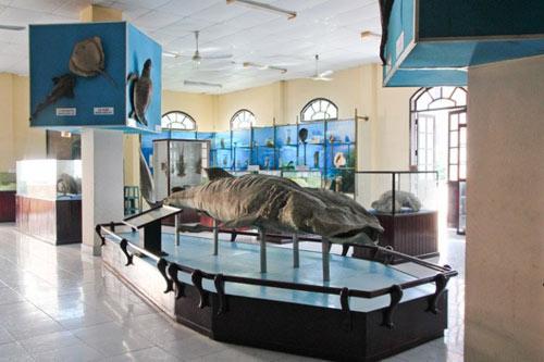 Những địa điểm nhất định phải đến khi du lịch Nha Trang - 4