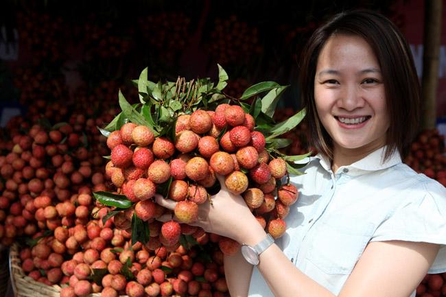 Người Hà Nội đã được ăn vải thiều Bắc Giang chính hiệu - 4
