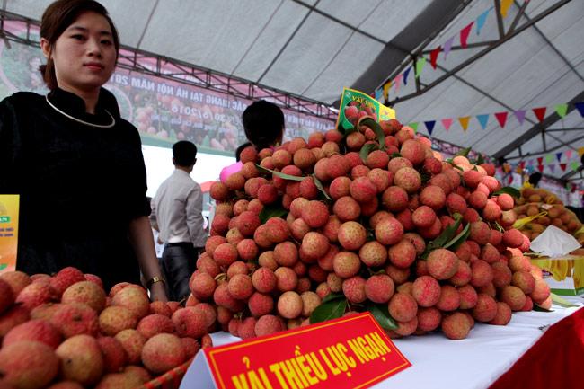 Người Hà Nội đã được ăn vải thiều Bắc Giang chính hiệu - 10