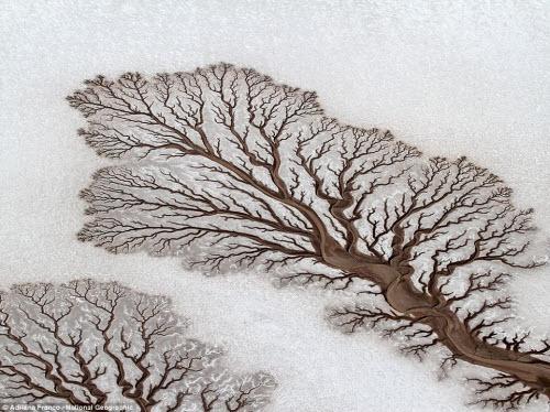 15 bức ảnh thiên nhiên đẹp lạ như... ảnh Photoshop - 7