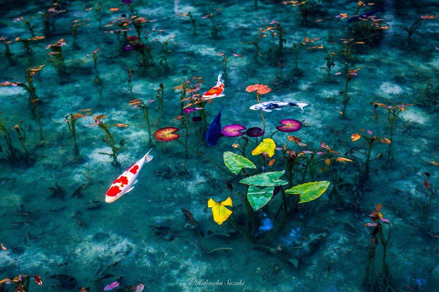 Mùa mưa Nhật Bản đẹp tựa tranh vẽ - 9