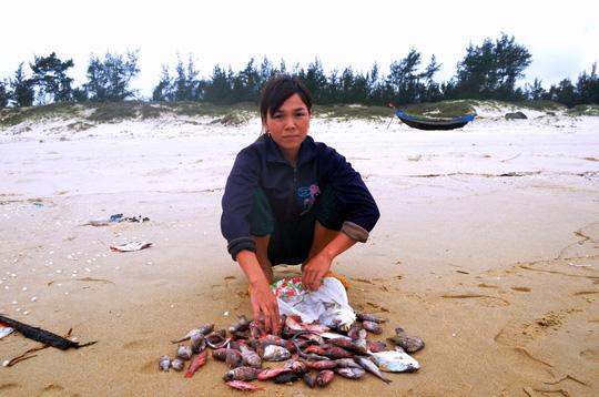 Cá chết hàng loạt ở Miền Trung - Công bố nguyên nhân cá chết - 2