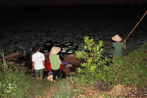 Trà cổ Hà Nội 7 triệu đồng/kg ướp từ 1200 bông hoa sen - 1