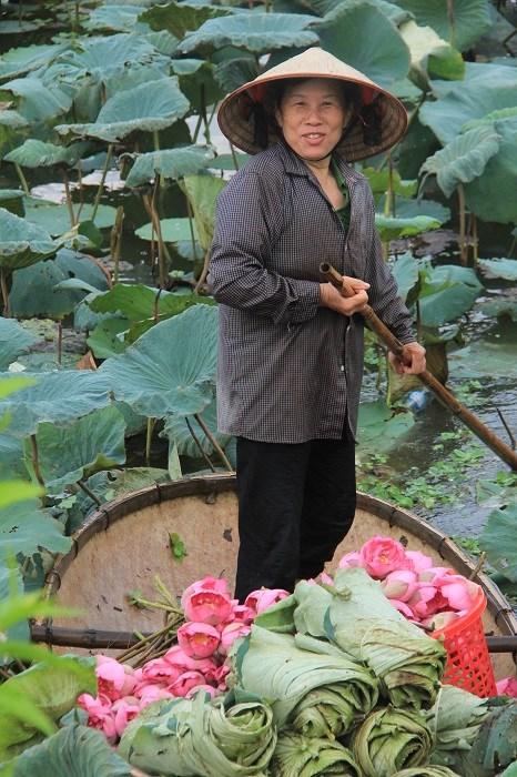 Trà cổ Hà Nội 7 triệu đồng/kg ướp từ 1200 bông hoa sen - 8