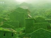 """Du lịch - """"Đảo ma"""" xanh mướt, đẹp như tranh vẽ ở Trung Quốc"""