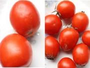 Sức khỏe đời sống - Dễ dàng nhận biết cà chua có hóa chất