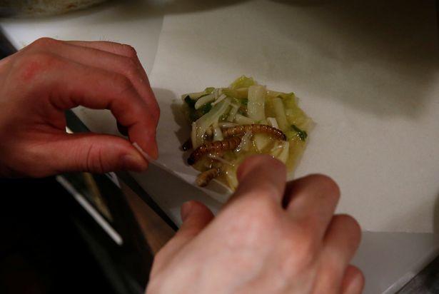 Phát hoảng với món mì côn trùng đang gây sốt tại Nhật - 4