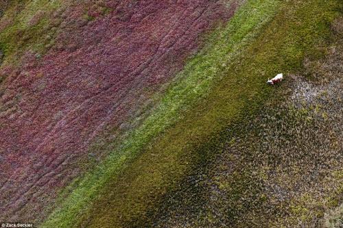 """""""Ngất lịm"""" trước cảnh đẹp hoang dã ở Nam Phi - 10"""