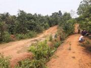 An ninh Xã hội - Vụ cô giáo tương lai nghi bị hiếp, giết: Tiếng thét tuyệt vọng giữa rừng
