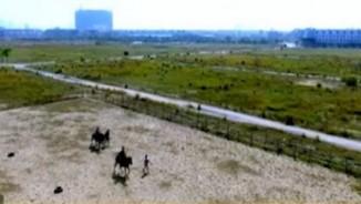 Rủ nhau đi cưỡi ngựa ngay giữa lòng Thủ đô