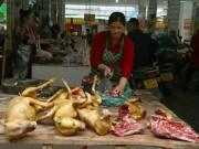 Nơi đầu tiên châu Á cấm ăn thịt chó