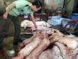 Lợn bệnh chết biến thành thịt hun khói, thịt lợn Mán
