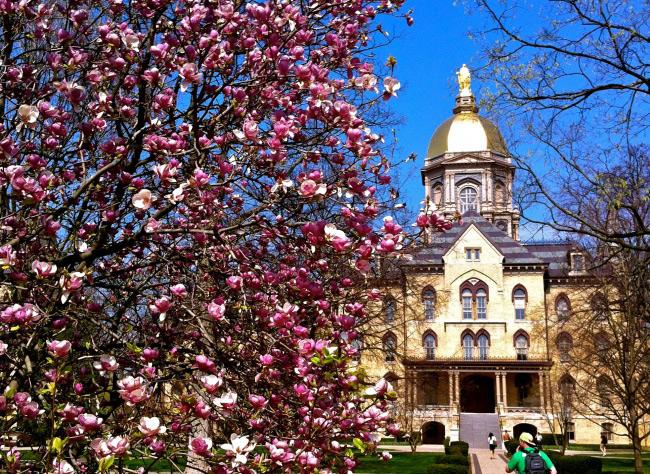 Đại học Notre Dame nổi tiếng với hình ảnh tòa tháp Golden Dome - biểu tượng nổi tiếng của trường. Đây là một trong những trường đại học hàng đầu tại Mỹ.