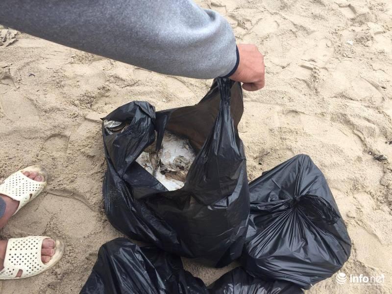 Xuất hiện cá chết trôi dạt vào bờ biển Vũng Áng - 3