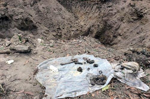 Tìm thấy hố chôn tập thể liệt sĩ tại sân bay Biên Hòa - 1
