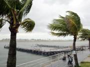 Tin tức trong ngày - Việt Nam sẽ hứng chịu bao nhiêu cơn bão trong năm 2017?