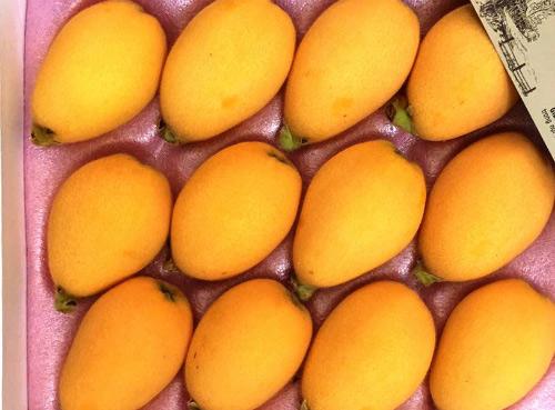 """Ưa trái cây Nhật """"sang chảnh"""": Người Việt mạnh tay chi tiền triệu - 9"""