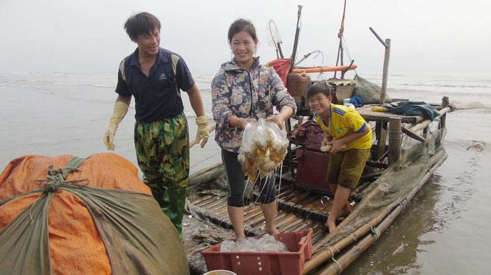 Sứa dày đặc trên biển, ngư dân Nghệ An đi vớt kiếm tiền triệu/ngày - 3