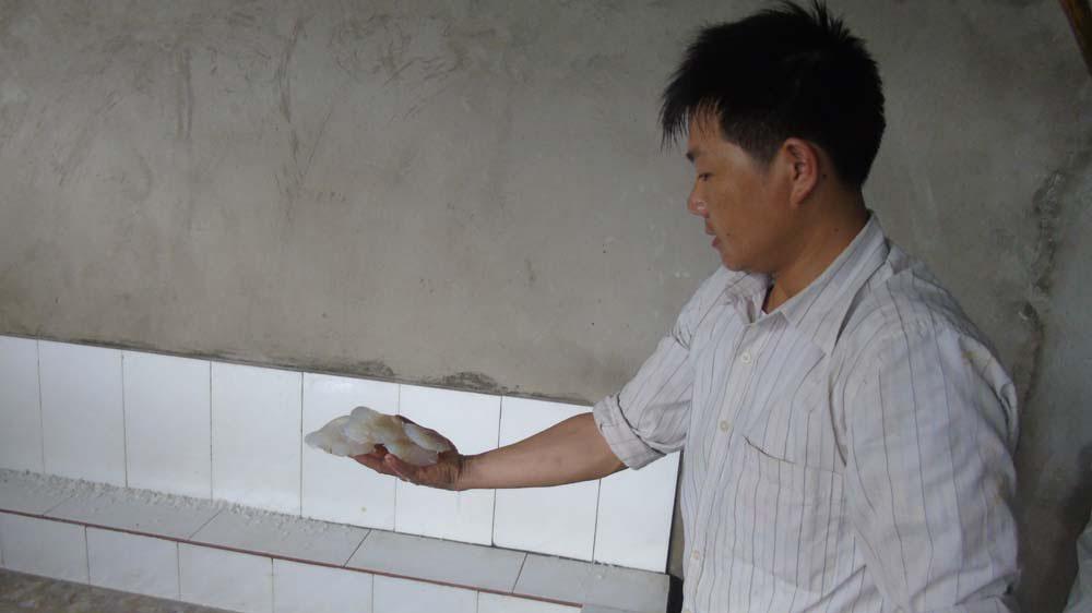 Sứa dày đặc trên biển, ngư dân Nghệ An đi vớt kiếm tiền triệu/ngày - 7