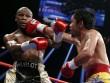 Mayweather - McGregor tỷ đô: Pacquiao bị lôi vào cuộc