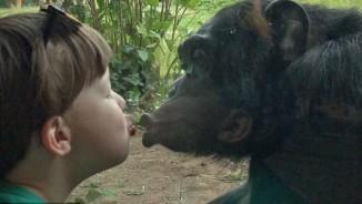 Clip nụ hôn đặc biệt của cậu bé 4 tuổi với tinh tinh