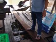 """Thị trường - Tiêu dùng - Đồng Nai: Đến lượt """"vỡ trận"""" giá cá chỉ còn 25.000 đồng/kg"""