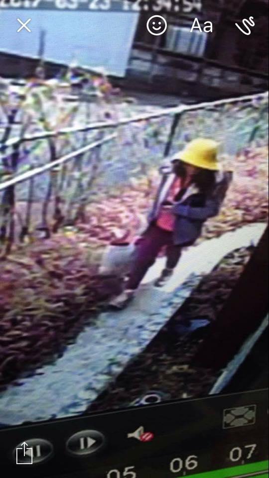 Mẫu ADN trên xe nghi phạm trùng khớp với bé gái Việt - 2