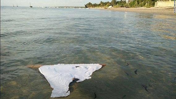 Úc phát hiện vị trí tiềm năng của MH370 - 3