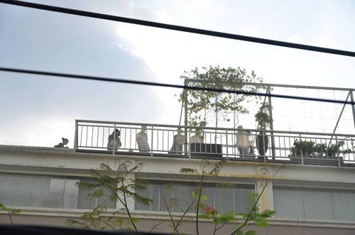 Xe thang giải cứu 11 người gào khóc trong đám cháy ở SG - 2
