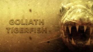"""Loài """"thủy quái"""" khổng lồ dữ tợn hơn """"hung thần Amazon"""""""