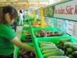 Rau quả Việt Nam xuất khẩu thu mỗi ngày gần 190 tỷ đồng