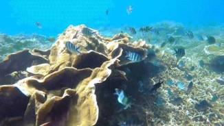 Mũi Né lọt top 5 địa điểm trải nghiệm mạo hiểm nhất châu Á