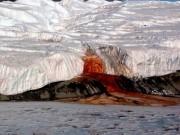 """Bí ẩn thác nước trăm năm chảy ra """"máu"""" ở Nam Cực"""
