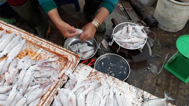 Quảng Trị: Chợ cháy hàng vì người dân đổ xô mua mực - 1